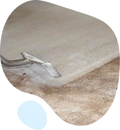 Best Carpet Cleaning Westlake Village CA